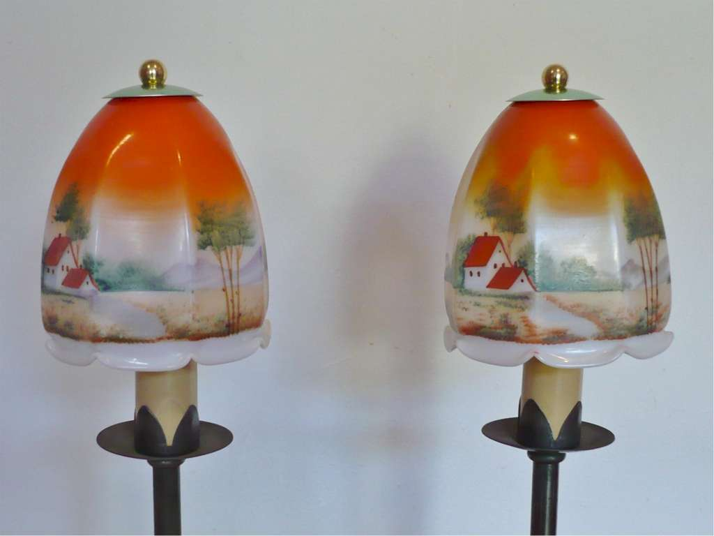 Pretty pair of table lamps , hand painted shades