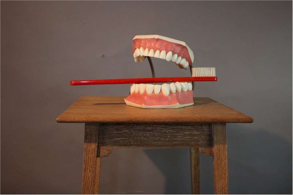 Oversized advertising set of teeth and toothbrush