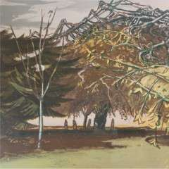 Edward Middleditch1923–1987 : Trees, Kensington Gardens. Lyons Lithogaphs